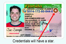 Driver For Requirements Document Fl Or License Id